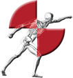 Injury Biomechanics Research Laboratory logo